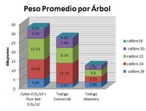 Gráfica 1. Peso promedio por árbol según los calibres de exportación.